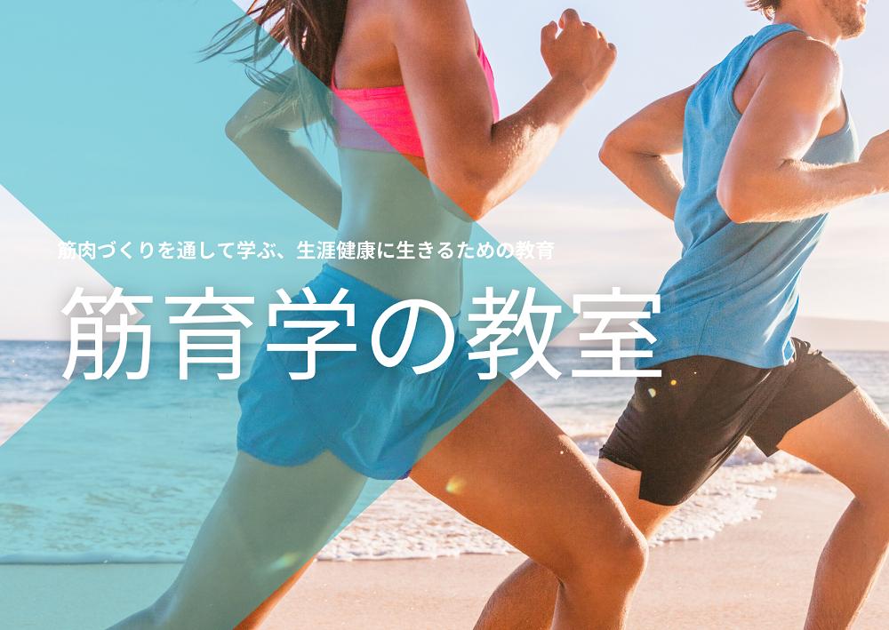 第4回 速い筋肉と遅い筋肉:歳をとるとどちらが減るか(後編)